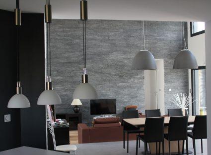 maison en bois avec séjour moderne