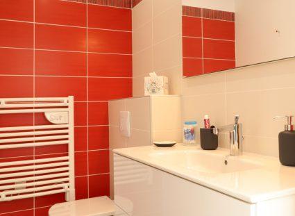 belle maison landaise avec salle de bain moderne