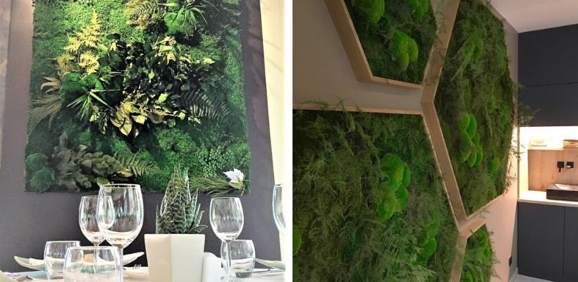 mur végétal avec apport lumineux