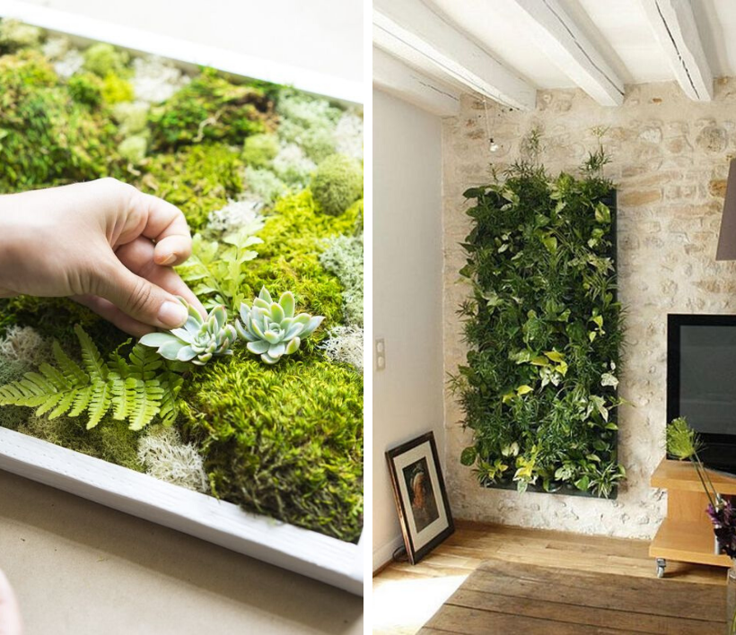 mur végétal bien agencé