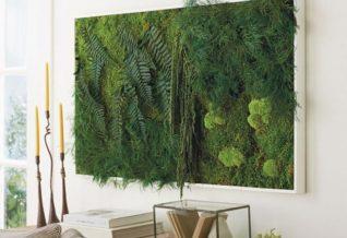 mur végétal dans le salon
