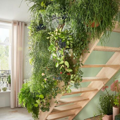 mur végétal isolant phonique